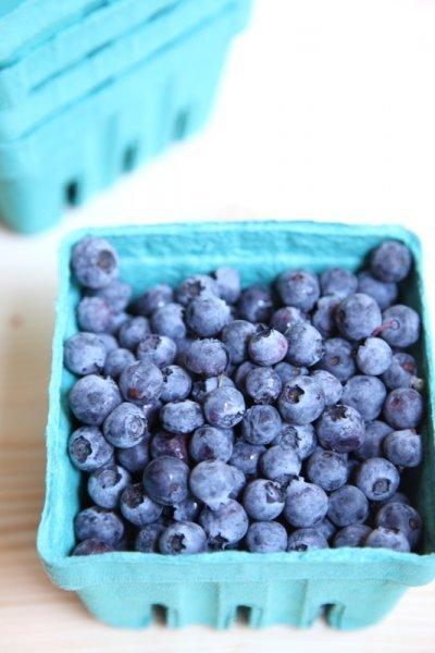 pici-e-castagne-blueberry-tea-bread-2