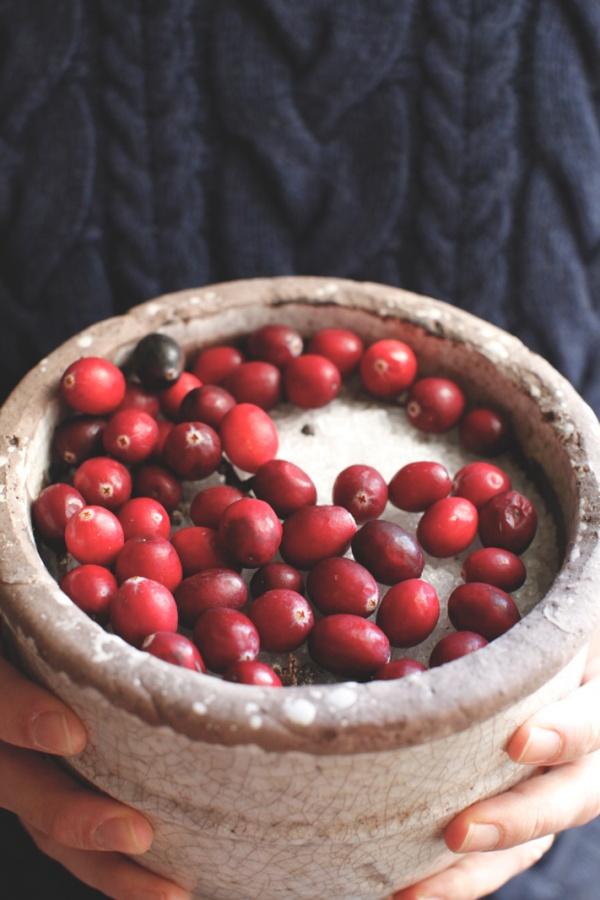 pici-e-castagne-cranberries-2