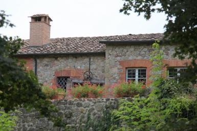 1055  385x pici e castagne san galgano   Foto