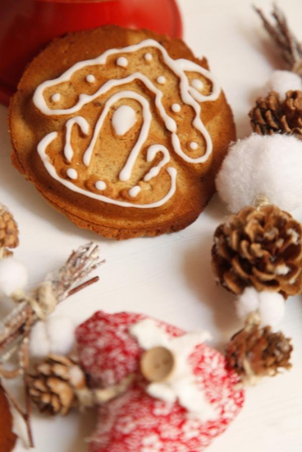 1450  600x pici e castagne gingerbread cookies   Foto