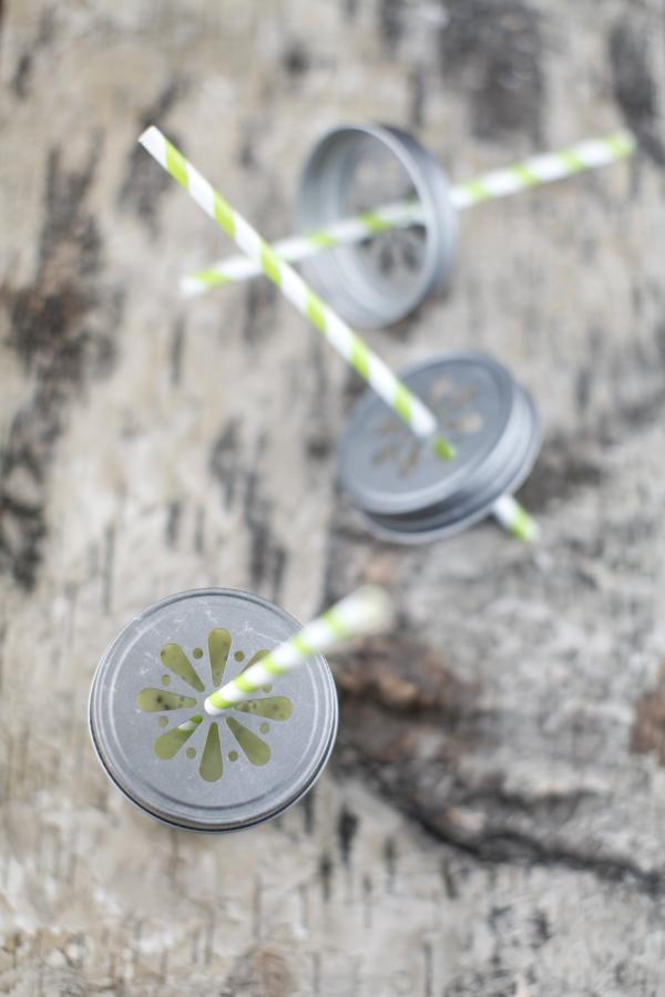 1817  600x pici e castagne smoothie al kiwi 2   Foto