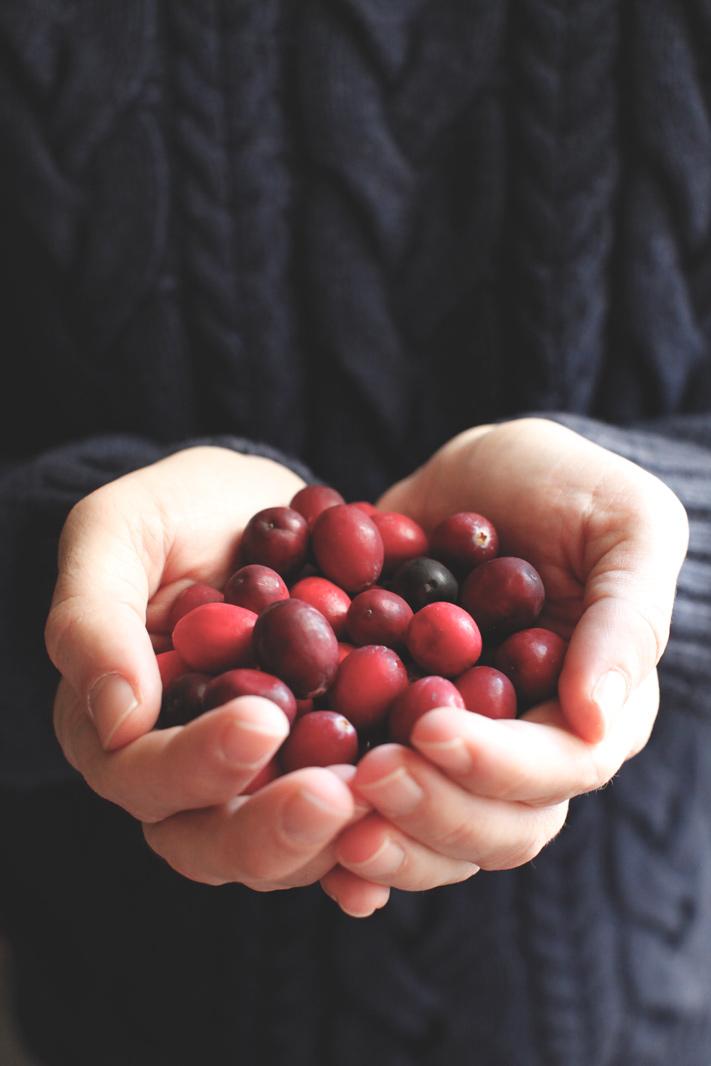 pici-e-castagne-cranberries
