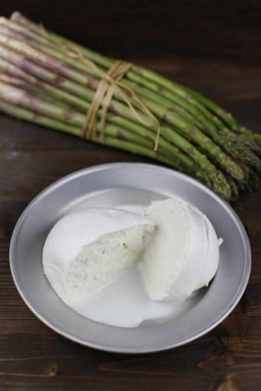 pici-e-castagne-conchiglioni-2