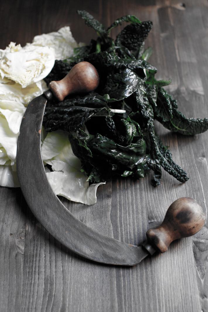 pici-e-castagne-ribollita-5