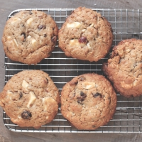 "<span class=""corsivo""> The Perfect Bite </span> : :  CRANBERRY OAT WHITE CHOCOLATE COOKIES"