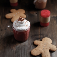 "<span class=""corsivo""> The Perfect Drink </span> : : GINGERBREAD LATTE"