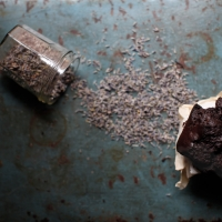 "<span class=""corsivo""> The Perfect Bite </span> : : TORTINE AL CACAO CON OLIO E LAVANDA"