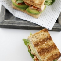 "<span class=""corsivo""> The Perfect Bite </span> : : TOAST CON SALMONE ED AVOCADO"